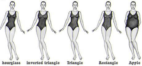 Examples of body shapes and types